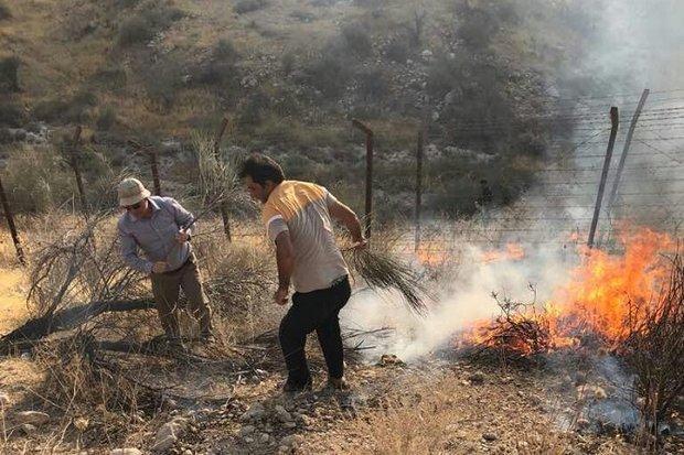 11 مورد آتش سوزی در مراتع استان زنجان اتفاق افتاده است